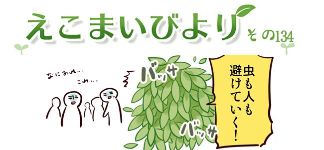 えこまいくまーの4コマ漫画 vol.134